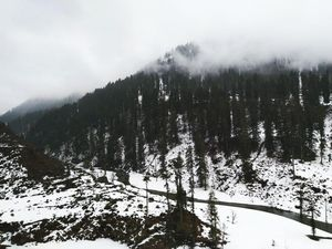 Kasol-Tosh : Nature has it's own way of surprising you.