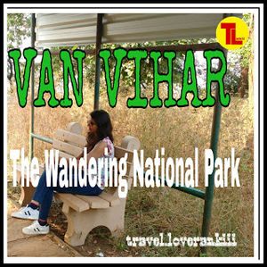 VAN-VIHAR -- The Wondering National Park In Madhya Pradesh