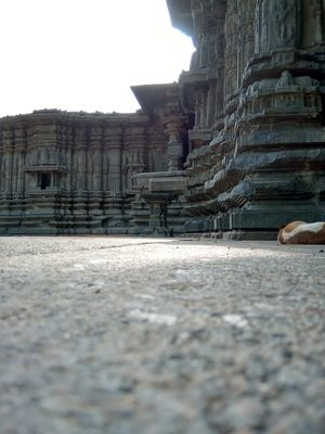 Thousand pillars temple at Warangal