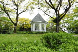 Singapore Botanic Gardens 1/7 by Tripoto