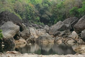 Satpura National Park 1/10 by Tripoto