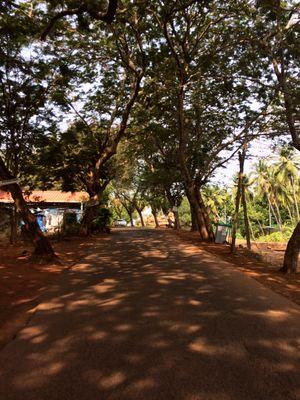 Magnificent Goa!!!