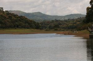 Periyar National Park 1/undefined by Tripoto