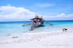 Babu Santa Beach Resort 1/undefined by Tripoto