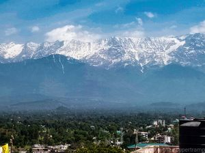 Kangra valley pilgrimage: toy train and temples
