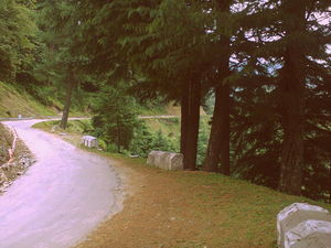 A Road Trip to Prashar Lake