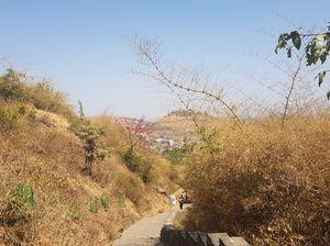 Trek to Bramhagiri, Trimbakeshwar, Nashik