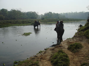 Chitwan 1/undefined by Tripoto