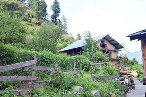 Sarchi – A quaint hamlet tucked away in hills of Himachal