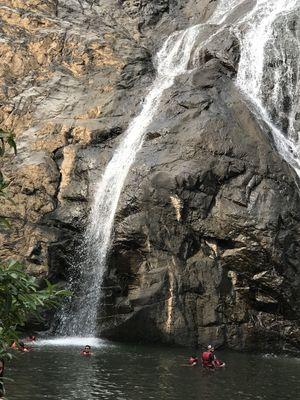 Hidden Gems of Goa Dudhsagar Falls #offbeatGoa