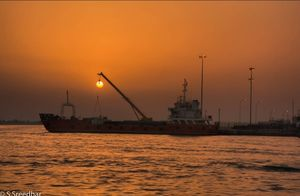 Fishing for the sun in Abu Dhabi