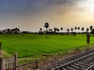 Train journey from hyd to madgaon.