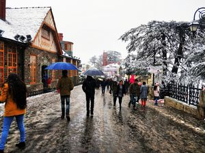 First Snowfall Of Shimla