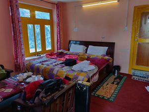 Where not to Stay at Chitkul- The Wanderer's Nest
