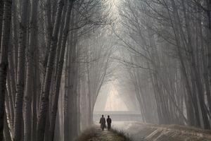 Village scene in Kashmir during winter season.