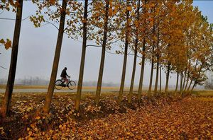 """Beautiful Kashmir travel in the month of October """"Autumn season"""""""