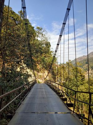 22 days in the  primitive or reserved land  of sikkim ... Gnon Sangdong (north sikkim)