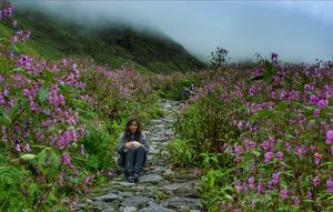 My solo trip to Valley of flowers national park