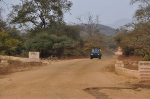 Sariska Tiger Reserve And The Best Ways To Go About It