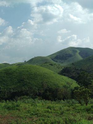 Abode of greenery: Sakleshpur, Karnataka