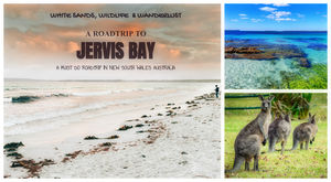 World's whitest beaches, an encounter with wildlife and an entertaining Road-Trip to Jervis Bay, NSW