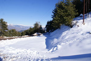 My first date with snow – Katra to Patnitop