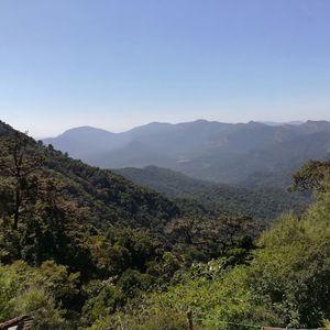 First Trek: Ultimate Experience Trek To Kodachadri: Western Ghats
