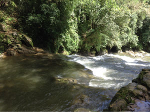 Mawlynnong: The Science Of Traditional Root Bridges