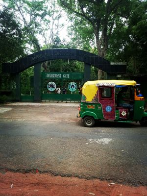 Trip to Neermahal and Sepahijala Zoological Park with friends