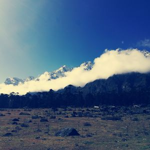 Journey to Paradise: Lachung & Yumthang, North Sikkim