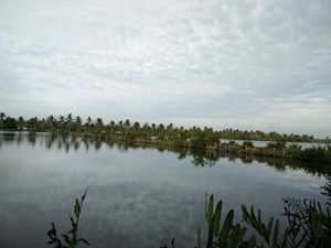 Discover the fascinating waterworld of Kerala