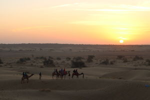 A visual spectacle of Thar: Jaisalmer #rajasthaninphotos