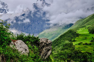 """You Might Have to Pay """"Green Tax"""" Now When You Travel to Uttarakhand"""