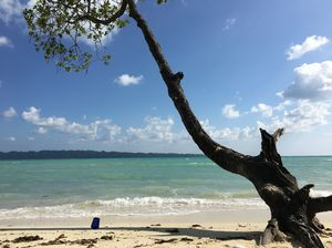 A perfect getaway in the pristine beaches of Andaman and Nicobat Islands