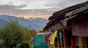 Yes, there is home for everyone in Manali - C6 Manali