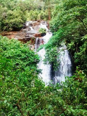 Sirimani Falls 1/undefined by Tripoto