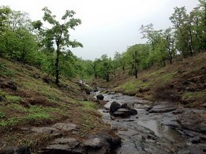 "Best place in Monsoon  ""Malshej Ghat"""