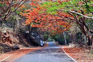 """Keep calm and drive on"" @ Horsley hills road trip from Bangalore"
