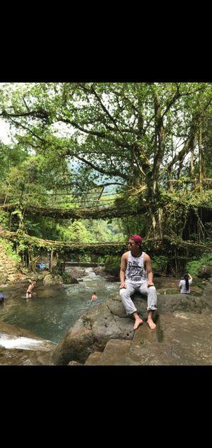 A trek to the Double Decker Living Root Bridges of Meghalaya. #northeastphotos