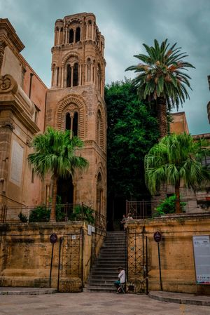 Palm trees of Palermo