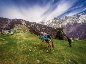 Exploring Himalayas