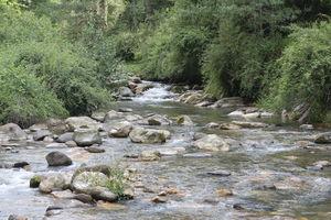 Summer Escapade: Delhi to Jibhi (Himachal Pradesh)