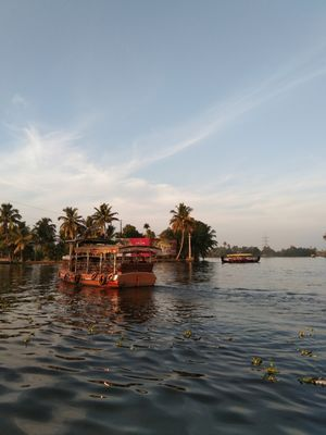 Alleppey's Backwaters