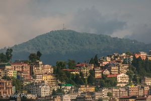 Darjeeling the place to be