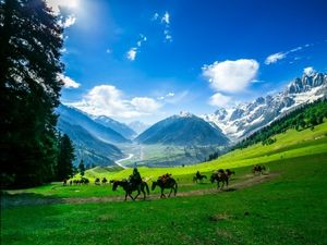 """Tosa maidan """"the forgotten meadow is the most beautiful place in Kashmir"""