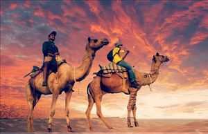 Golden city of forts, lakes and sand dunes- Jaisalmer