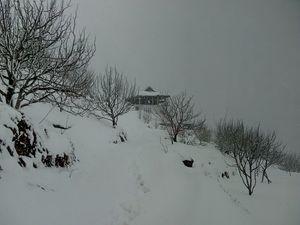 Winters in Chambi Valley, Shimla (Himachal Pradesh, India).