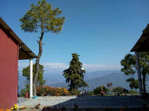 Almora: The calling continued