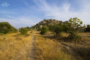 Rachakonda Fort -  An epitome of History & Adventure!