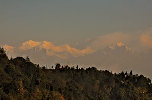 Sneak into the remote side of Darjeeling, Tinchuley _ nature lover's paradise